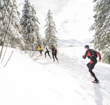 Trail Hivernal Oxsitis Sancy Mont-Dore